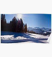 Snowscape II Poster