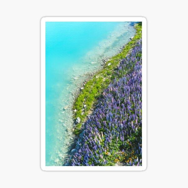 Shoreline Sticker