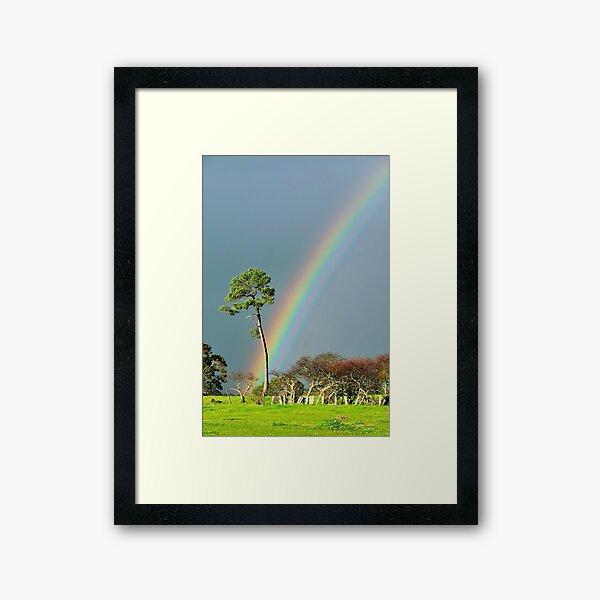 serious rainbow Framed Art Print