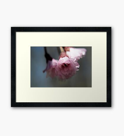 Let your heart not worry, for they have helped to cleanse the negativity Framed Print
