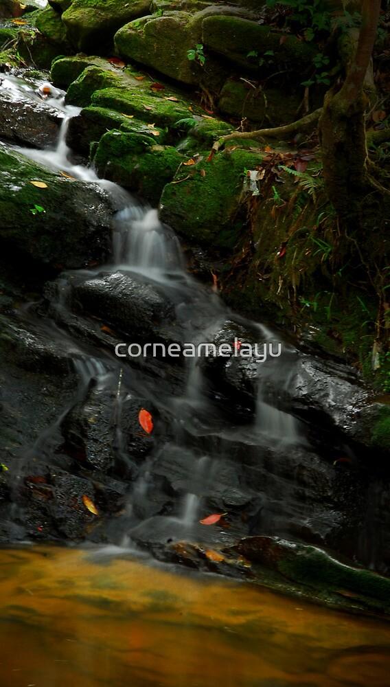 Waterfall @ Gunung Jerai by corneamelayu
