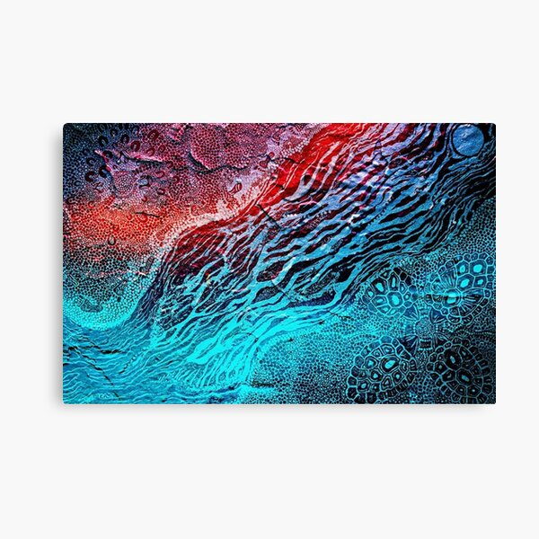 Sea Turtle Dreaming  Canvas Print