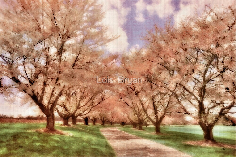 Down The Cherry Lined Lane by Lois  Bryan