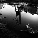 Murky Waters by Jocelyn  Parry-Jones