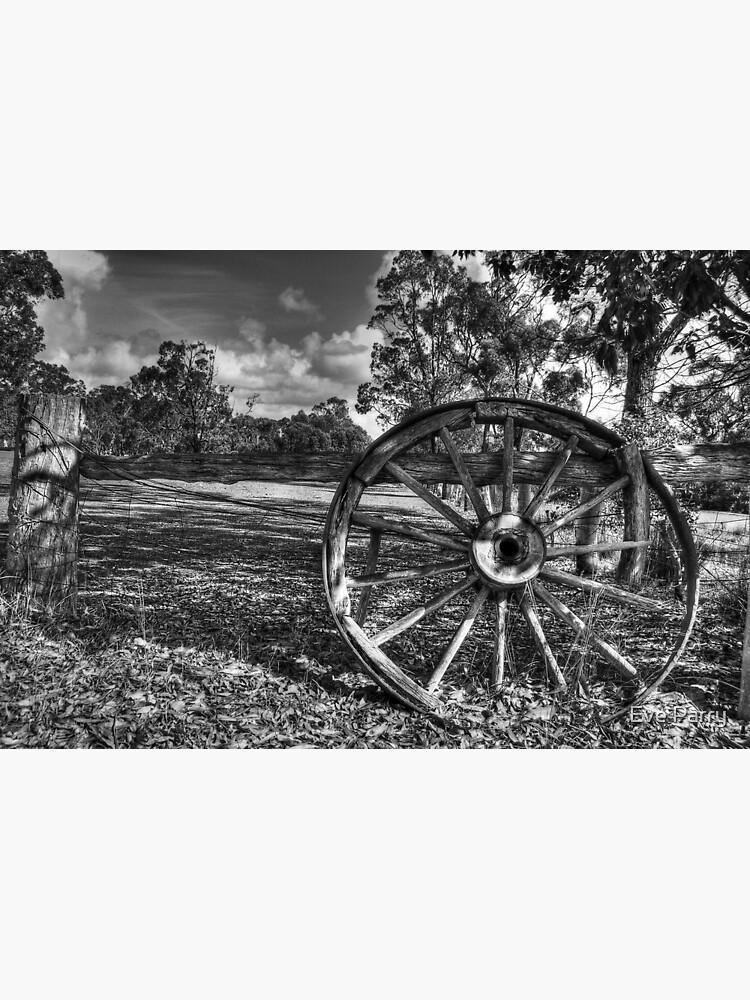 Wagon Wheel by AdamsWife