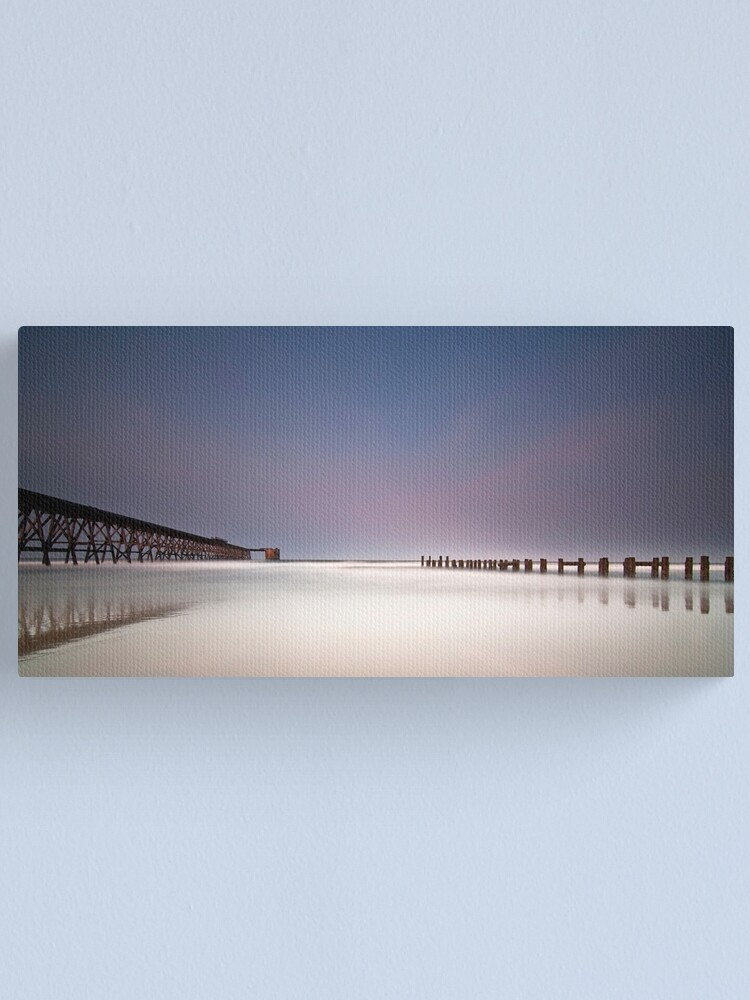 Alternate view of Twin_ Canvas Print
