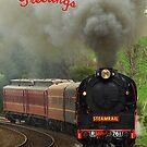 Steaming into Drouin - Gippsland, Australia by Bev Pascoe