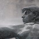fountain.trafalgar square by richard  webb
