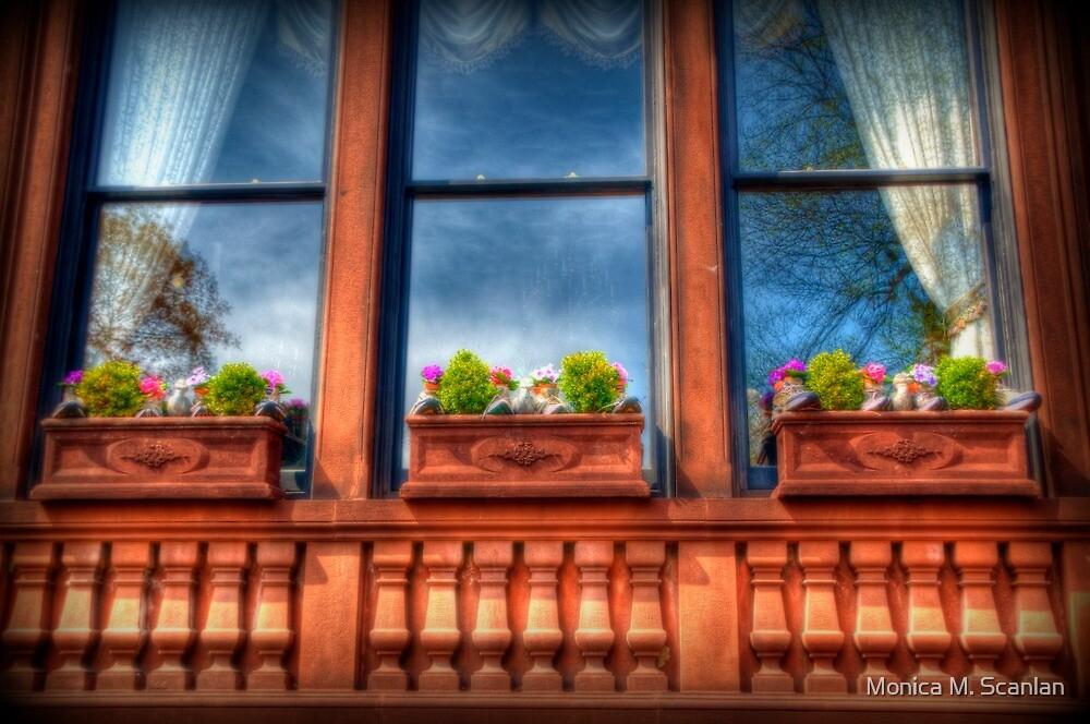 Beacon Hill Window Boxes by Monica M. Scanlan