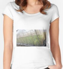Hydroponic Vegetables Women's Fitted Scoop T-Shirt