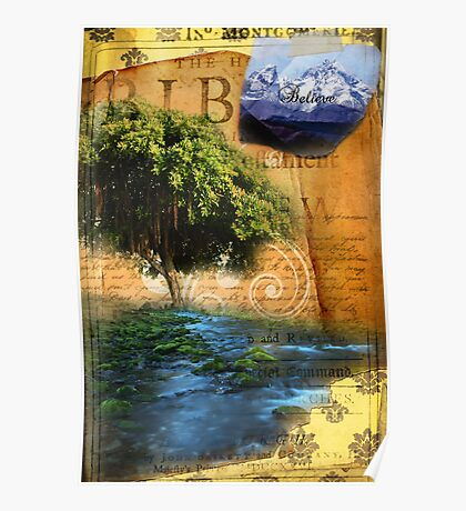 Planted by the Water Poster