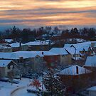 Post Snowstorm Just Pre-Sunset in Willowdale by Gerda Grice