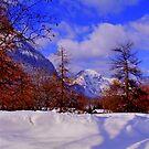 Snow by Daidalos