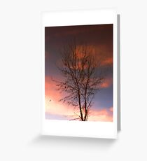 Evening Reflections Greeting Card