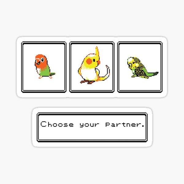 Choose your partner Sticker