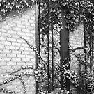 Secret Garden by Wini Minerd