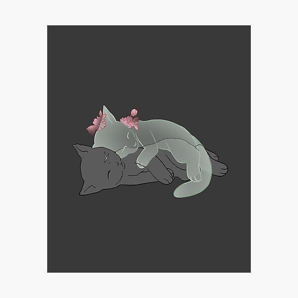 Guardian Kitten Photographic Print
