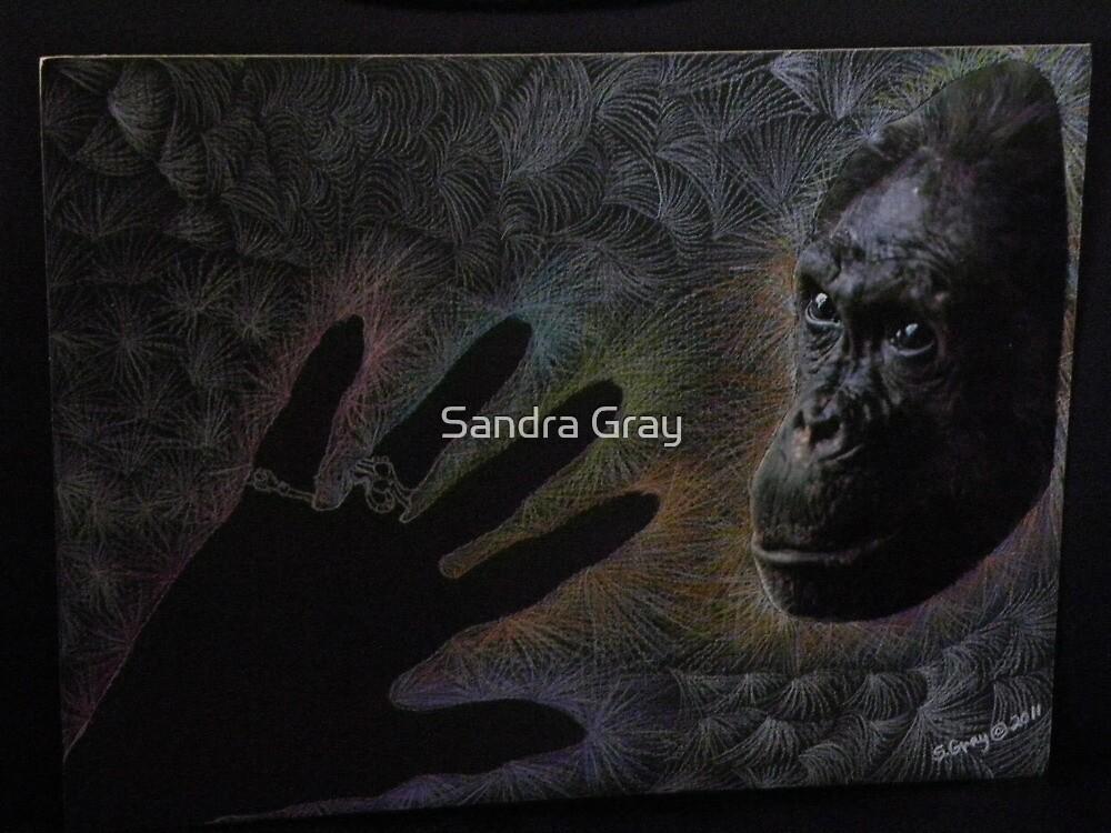 Shared Energy by Sandra Gray