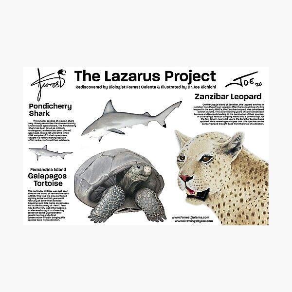 The Lazarus Project Photographic Print