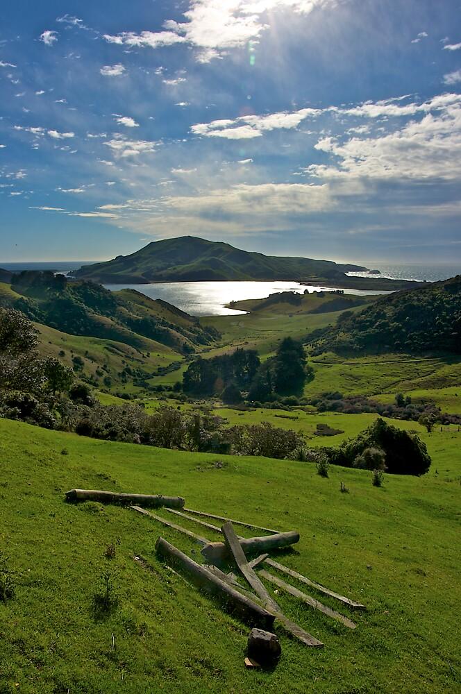 Neglected gate - Otago Peninsula, New Zealand by Phil McComiskey