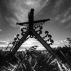 Gateway - Kaikoura, New Zealand by Phil McComiskey