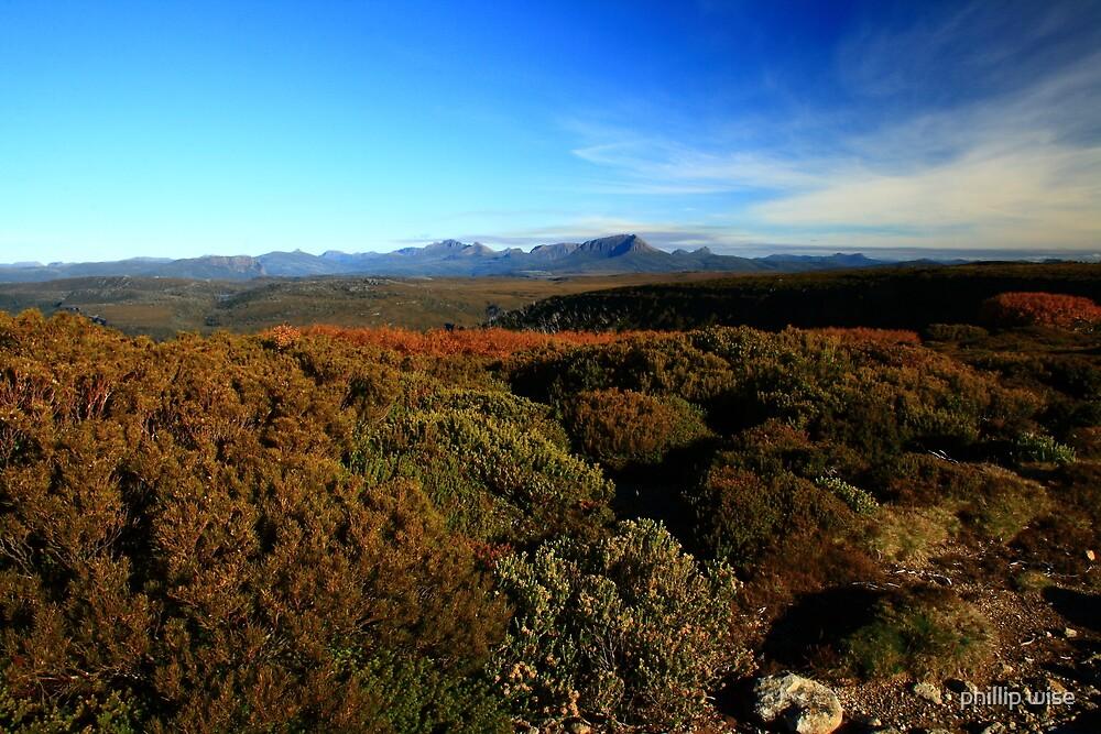 Tasmanian Wilderness by phillip wise