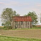 Old Barn in Hill County, Texas by Susan Russell