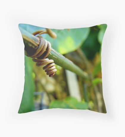Math is the Language of Nature Throw Pillow