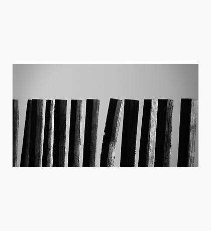 Lineup Photographic Print