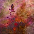 dream it ... believe it - art by Aimelle