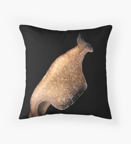 Swimming Flatworm Throw Pillow