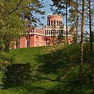 Moscow. Tsaritsyno palace I by Andrey Kudinov