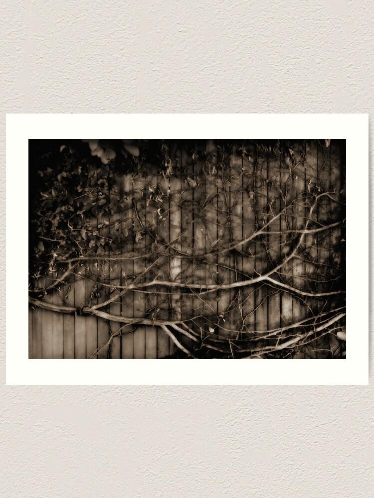 Alternate view of Fence & creeper Art Print