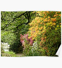 Trevarno Gardens, Helston Cornwall Poster