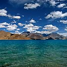 Blue Shores - Pangong Lake by CoSurvivor