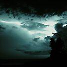 Night Light by Lea  Weikert