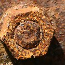 Rusty Nut by Mike HobsoN