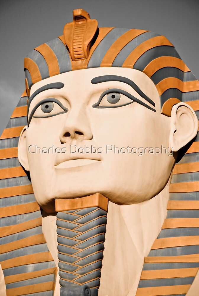 The Pharaoh of Egypt by Charles Dobbs Photography