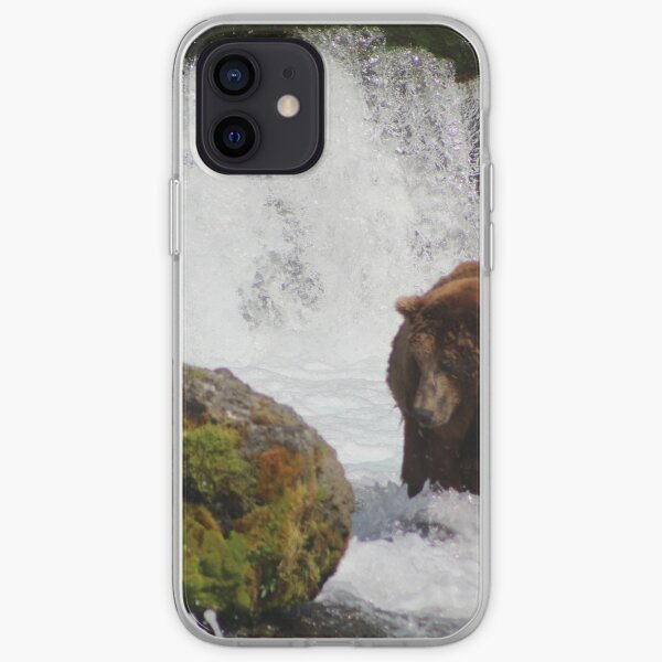 Brown Bear & Seagull Fish For Salmon iPhone Soft Case