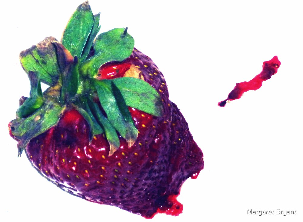 05-01-11:  Smashed Berry by Margaret Bryant