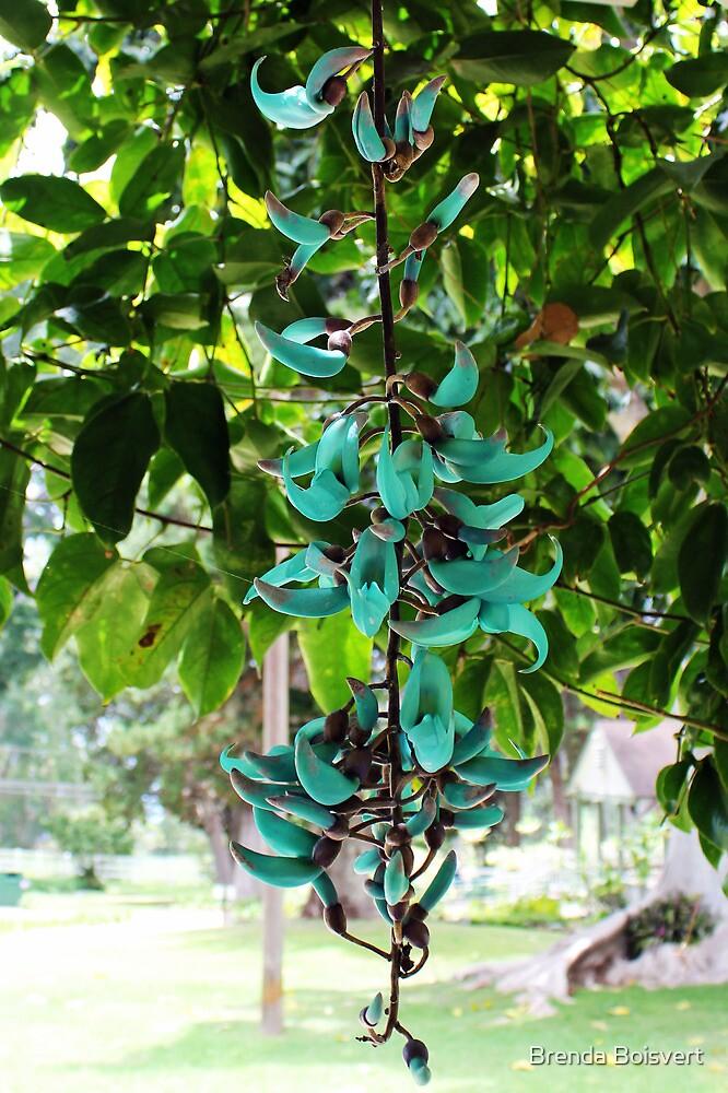 Jade Vine 2 by Brenda Boisvert
