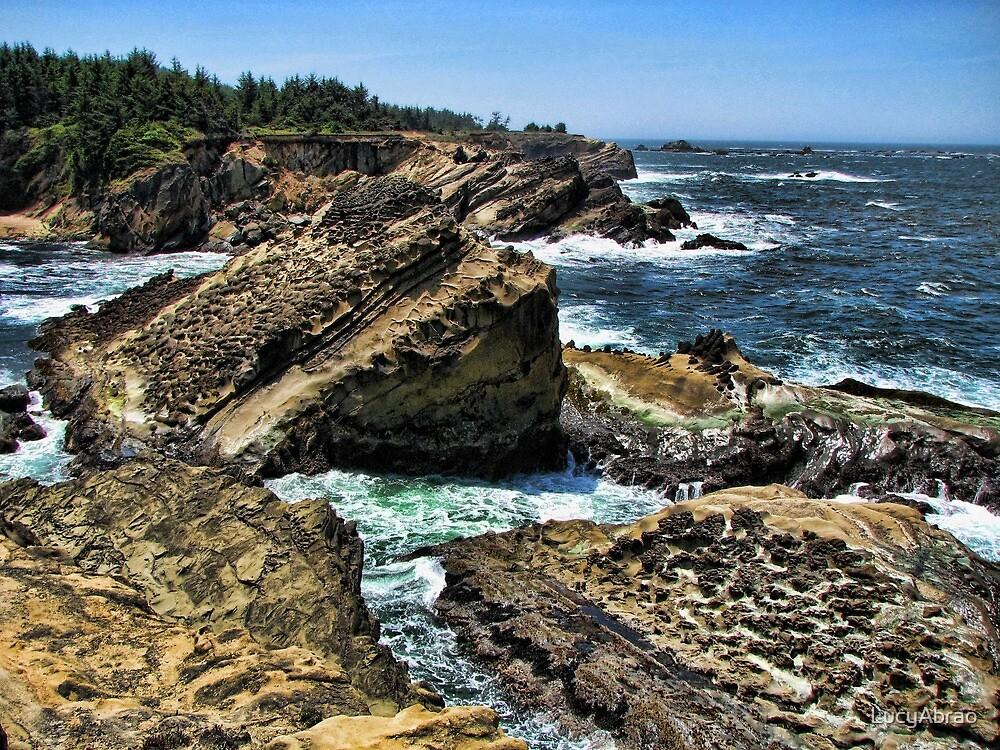 Oregon Coast At Shore Acres by LucyAbrao