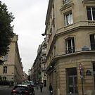 Walking Along the Rue - Paris by Danielle Ducrest