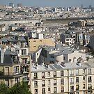 Chimneyscape - Paris by Danielle Ducrest