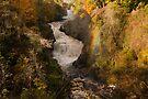 Reekie Lynn in Autumn by Cliff Williams