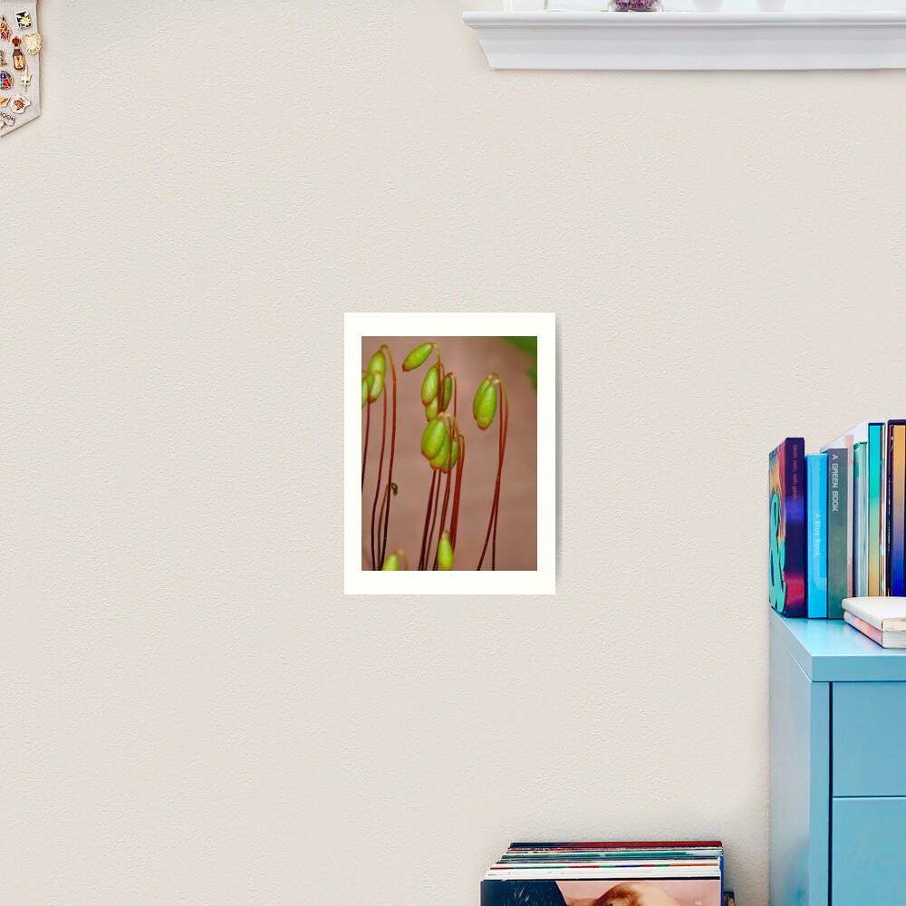 Moss Flowers Art Print