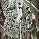 The Birdcages - Sydney - Australia by Bryan Freeman