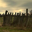For  Fence Lovers.................... by Larry Llewellyn