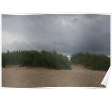 Grassy Dunes Poster