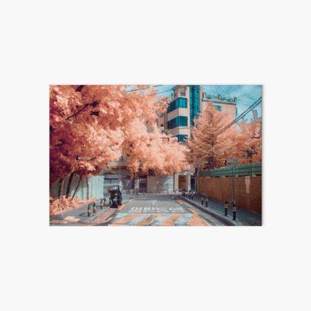 Dolgoji, Seoul Art Board Print